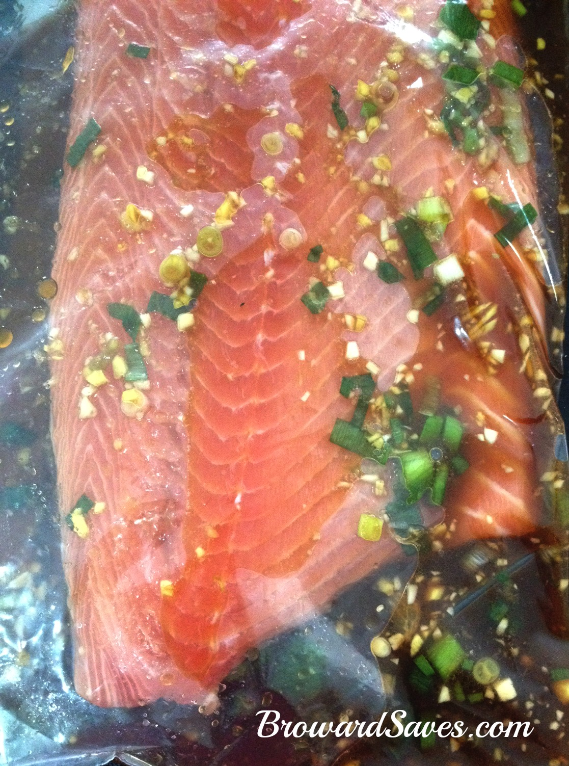 orange-ginger-soy-salmon-marinade-2