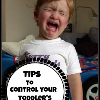 7 Tips To Control Your Toddler's Tantrums – Yes! It's Possible!
