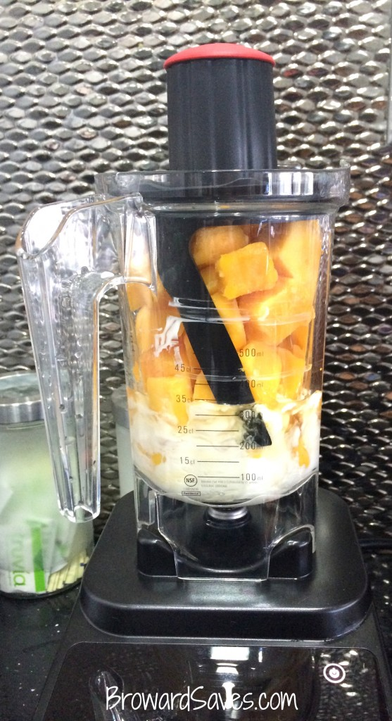 mango-frozen-yogurt-recipe-1