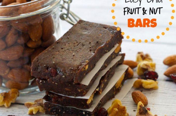 chia-fruit-nut-bars