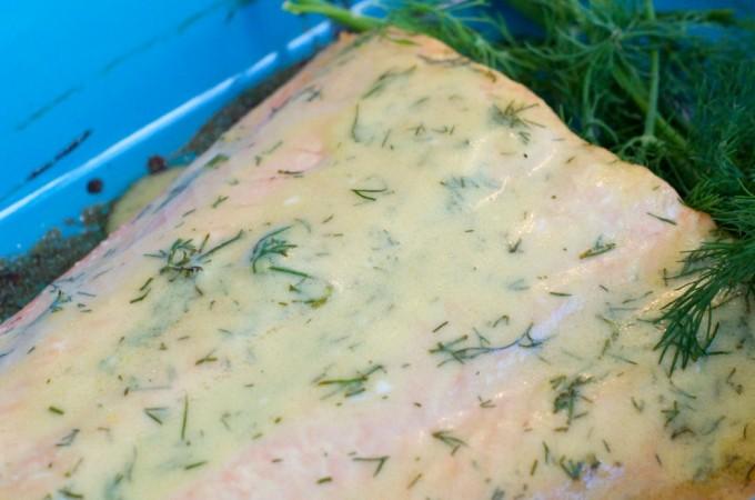 creamy-dill-baked-salmon-recipe-1