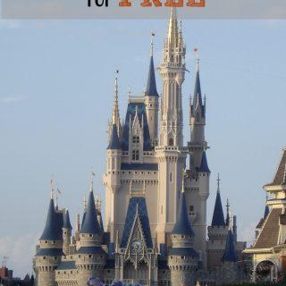 Enjoy A Little Bit Of Disney World For FREE!