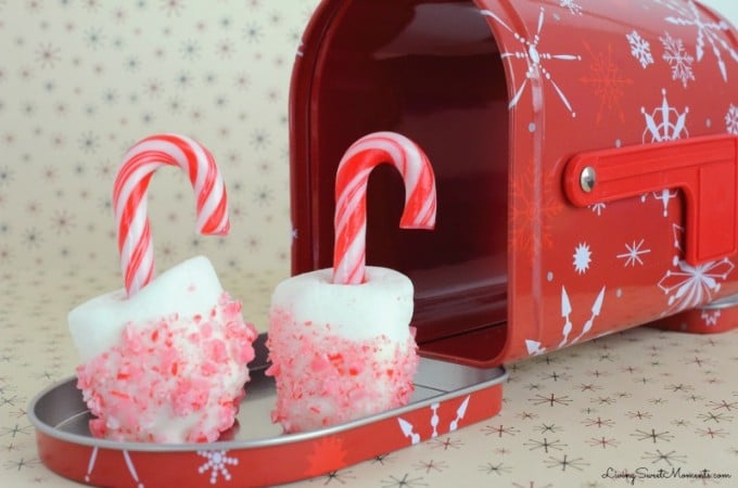 candy-cane-marshmallow-pops-1