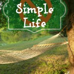 F#%$& The Simple Life – I love My Overly Complicated Life