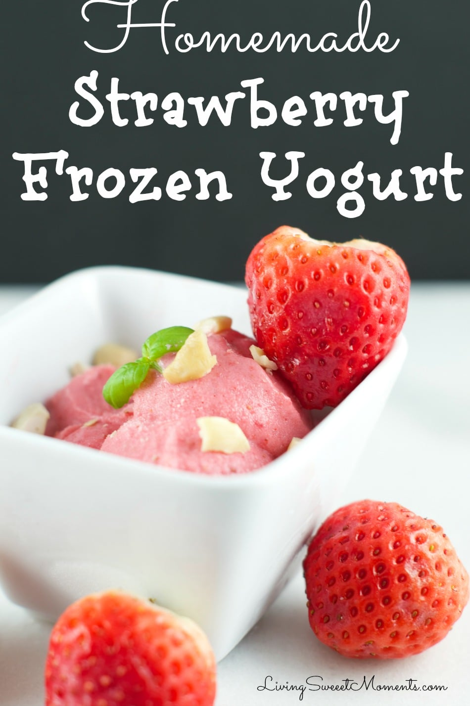 Homemade Strawberry Frozen Yogurt Recipe