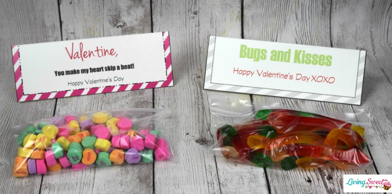DIY Valentine's Gift For Kids - Your kids will enjoy these cute treat bags and give them out to all of their friends. Comes with free printable label.