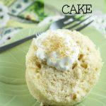 Baileys Irish Cream Mug Cake