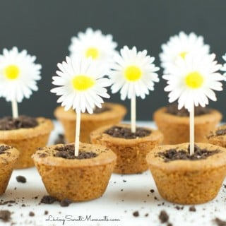 Super Cute Flower Pot Cookies