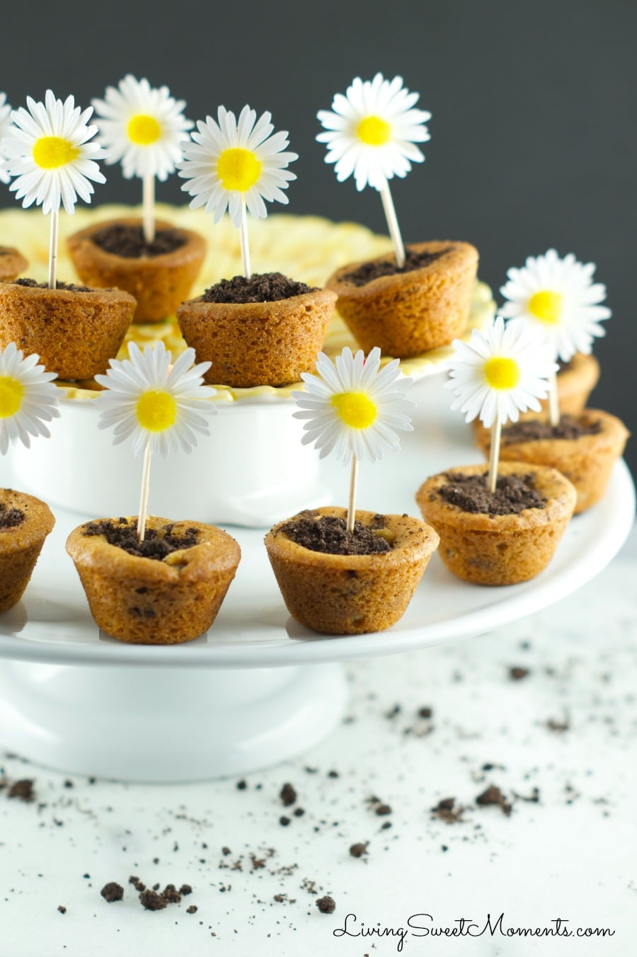 Flower Pot Cookies - Chocolate Chip Cookie cups filled with hazelnut chocolate and topped with crushed chocolate cookies. Welcome Spring with yummy cookies.