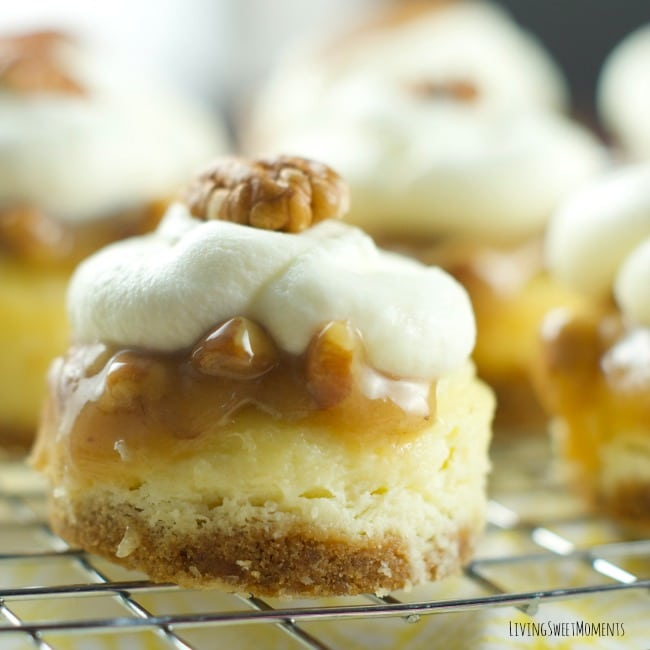 Pecan Praline Mini Cheesecakes
