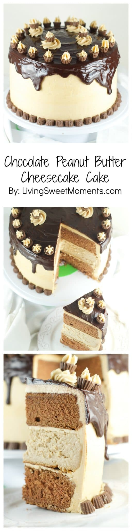 Chocolate Peanut Butter Cheesecake Cake - This is amazing cake features 2 chocolate cakes, a peanut butter cheesecake all covered in peanut butter buttercream and drizzled with chocolate ganache. The ultimate dessert. More cake recipes at livingsweetmoments.com