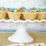 Easter Dulce de Leche Cookie Cups