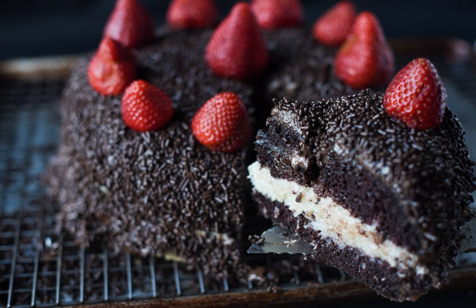 Here's 10 of the most amazing Dark Chocolate Cake Recipes you will ever try. From the cake layers, to the frosting. For a decadent and delicious dessert.