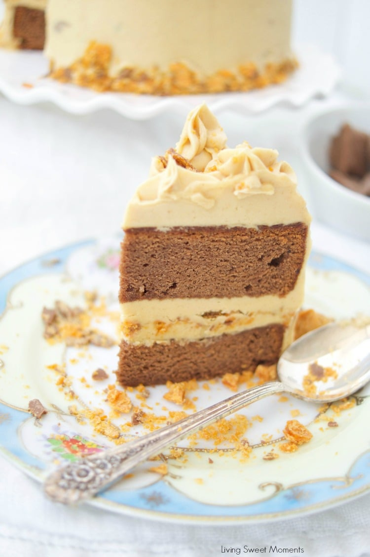 Moist Chocolate Peanut Butter Cake
