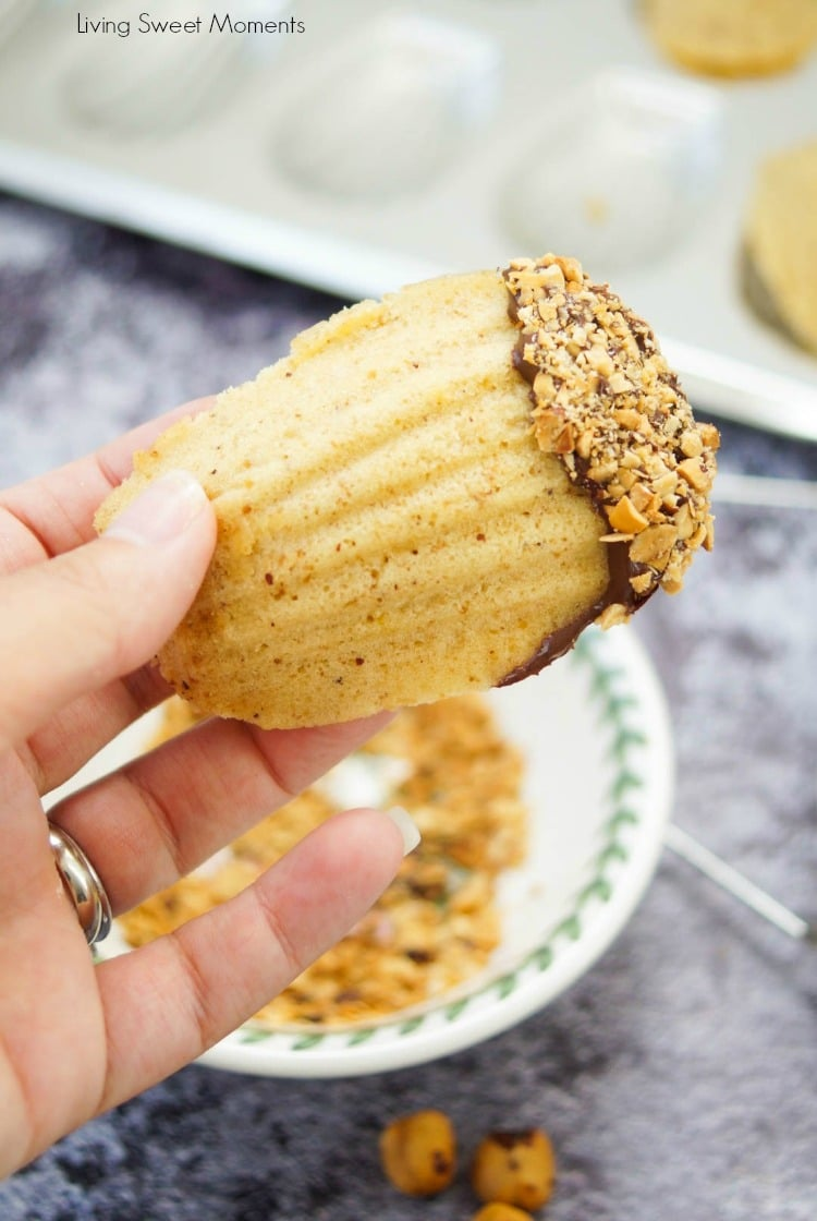 This melt in your mouth hazelnut Madeleines recipe is made with brown butter and ground hazelnuts for an amazing taste. The perfect delicate French cookie.