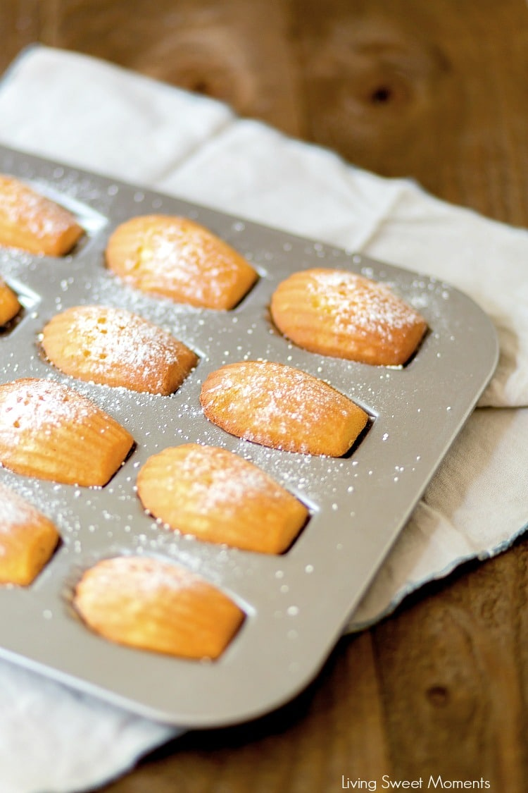 These Classic Lemon Madeleines cookies are soft, buttery, & delicious. Enjoy delicate French cookies that are super easy to make and give out as DIY Gifts.