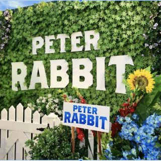 Peter Rabbit Movie: Meeting The Cast