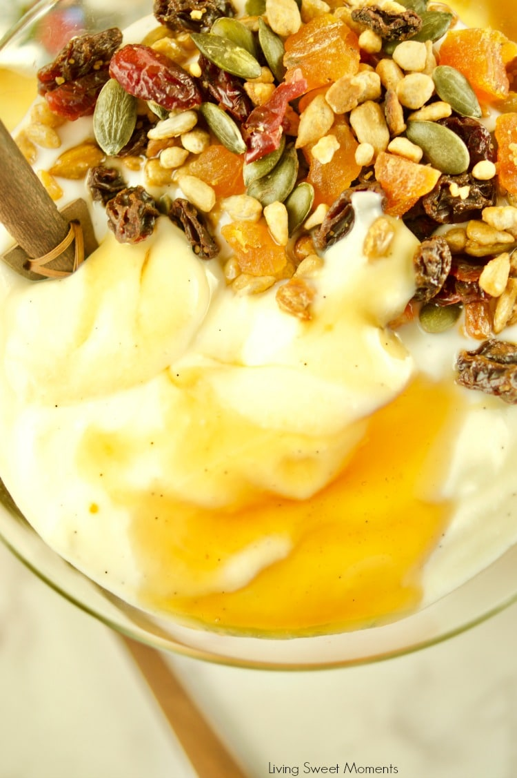 This super Easy Instant Pot Yogurt recipe a closeup of yogurt topped with trail mix and honey