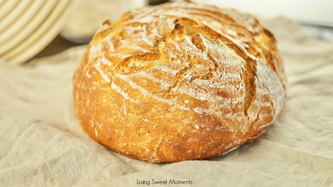 This crusty and delicious Instant Pot Sourdough Bread recipe made with homemade yogurt and it gives it an amazing taste