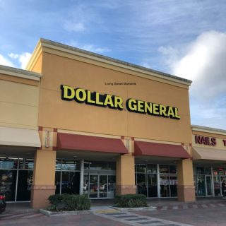 Have you downloaded the new Dollar General App? The new DG Go! App allows you to upload coupons, scan products, check your total and more!