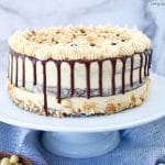 This decadent Crunchy Chocolate Hazelnut Cake has 3 layers of chocolate cake filled with creamy chocolate hazelnut ganache and frosted with praline cream