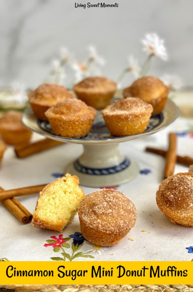 These delicate Cinnamon Sugar Mini Donut Muffins have a moist soft crumb with a crunchy cinnamon sugar topping. Perfect to serve with coffee or breakfast.