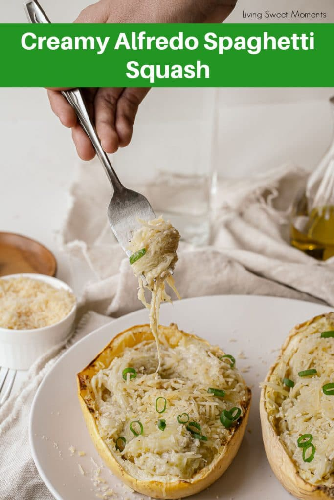 Delicious, nutritions, and wholesome. This amazing Alfredo Spaghetti Squash is easy to make and low-carb. Perfect for a weeknight dinner.